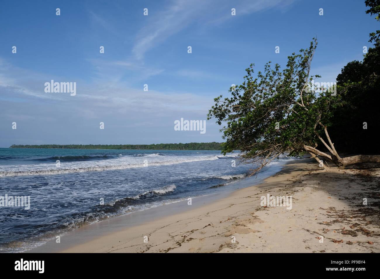 Bella e tranquilla spiaggia di Parco Nazionale Cahuita Immagini Stock