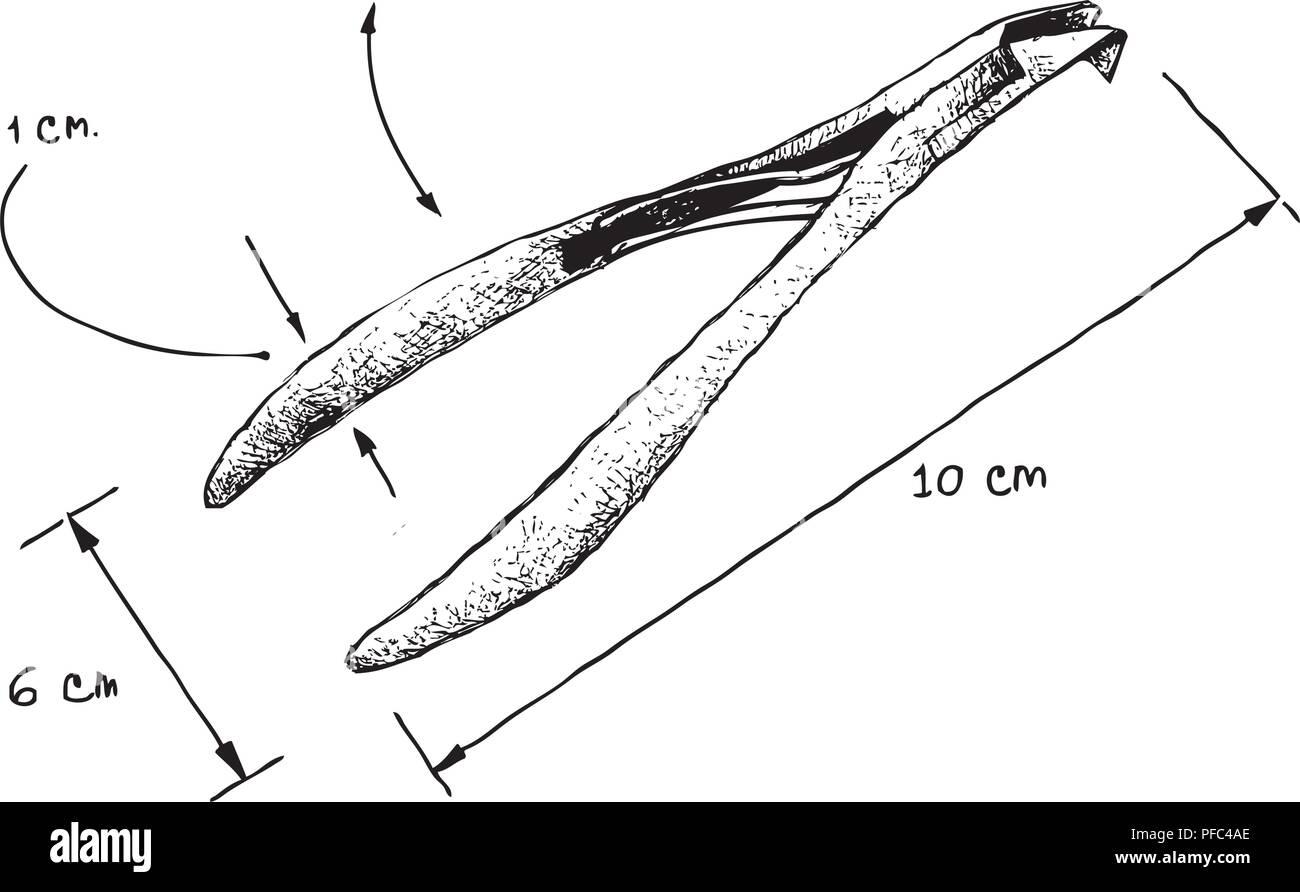 Illustrazione Disegnata A Mano Dimensione Disegno Del Tagliaunghie O