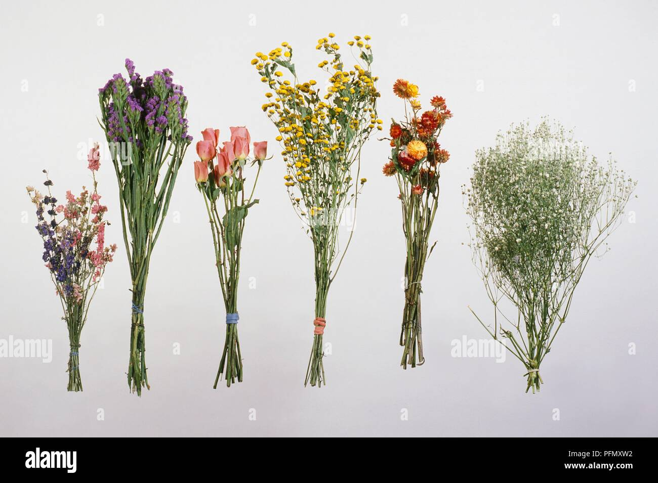 Mazzo Di Fiori Legato.Mazzi Di Fiori Legata A Secco Rose Tansy Gypsophila Delphinium
