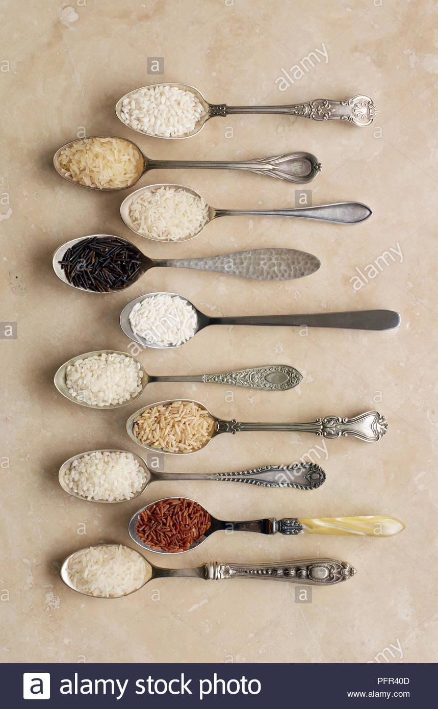 Cucchiai contenenti differenti tipi di riso, riso per risotti, riso a grani lunghi, il riso basmati riso selvatico, riso appiccicoso, budino di riso, riso, riso sushi, riso rosso di Camargue (riso), di riso al gelsomino Immagini Stock