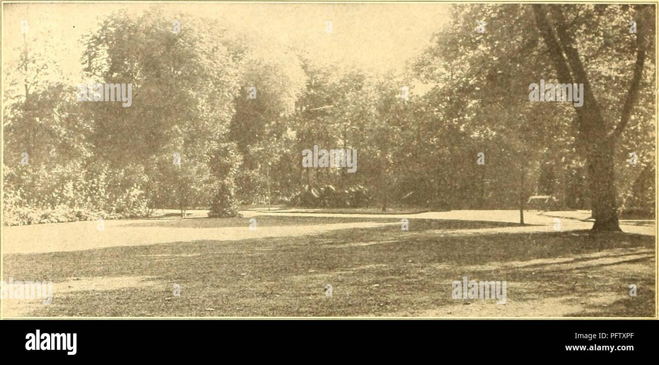 Piante Da Giardino Ombroso currie's farm e giardino : annuale di primavera 1926. semi