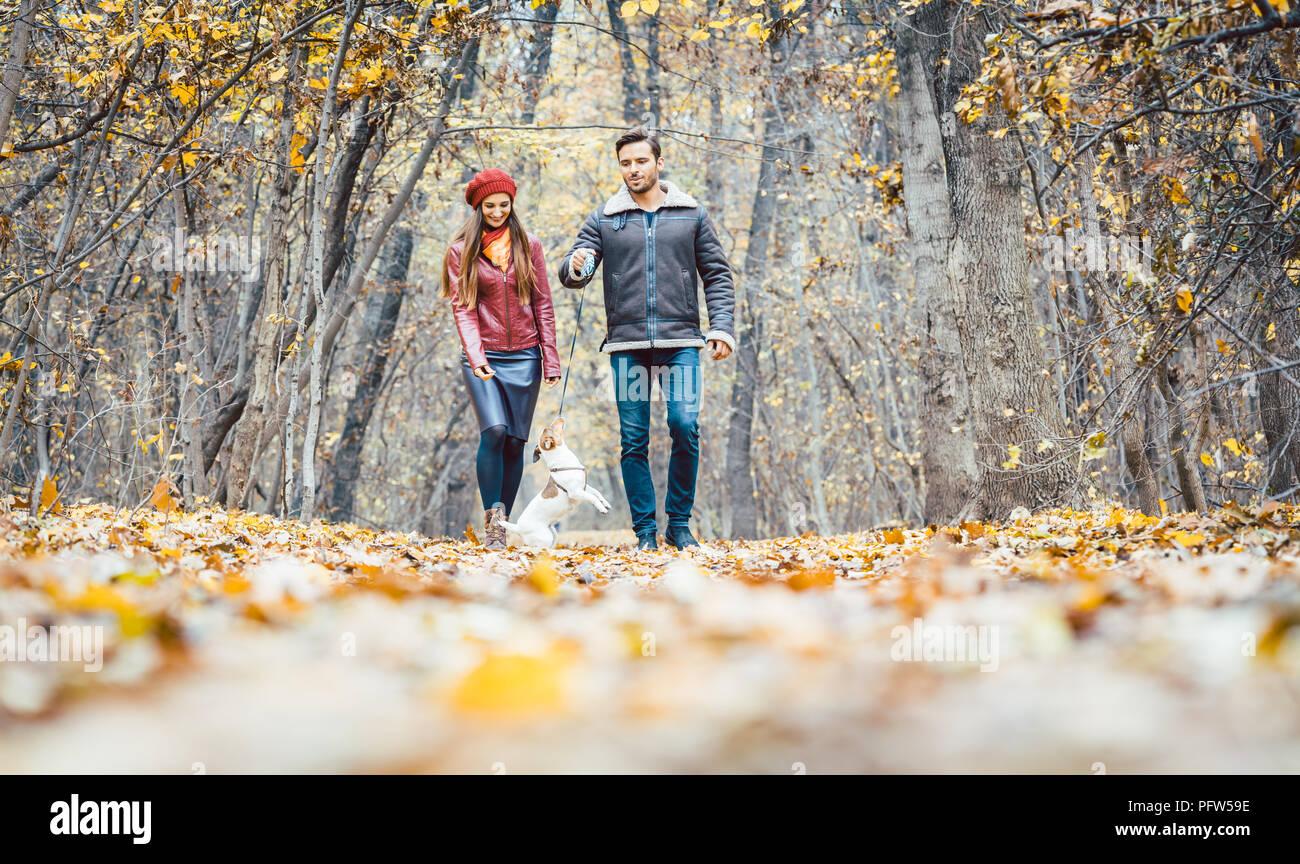 Coppia giovane a piedi con il loro cane in un colorato foresta di autunno Immagini Stock