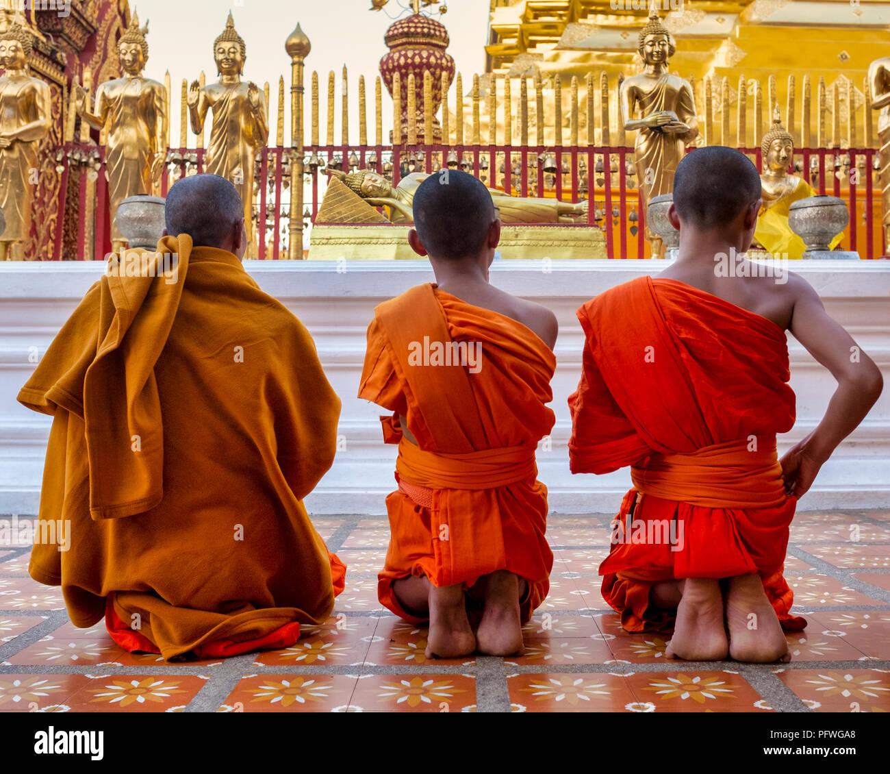 I monaci in Wat Phra That Doi Suthep, Chiang Mai, Thailandia Foto Stock