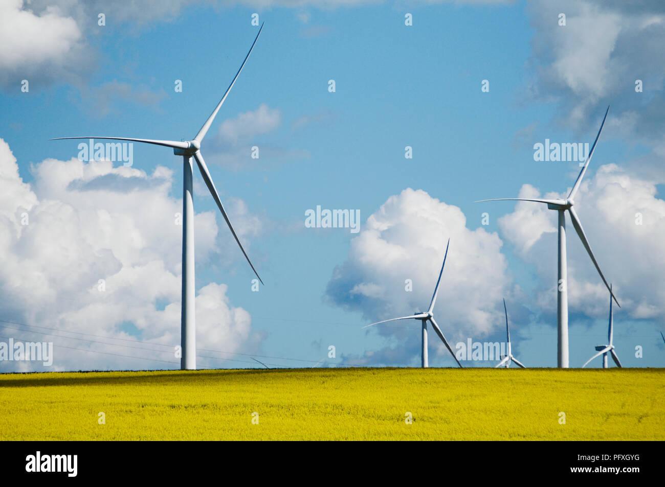 Il piazzale di stoccaggio Hill Wind Farm è un progetto di energia eolica si trova 35 km a ovest di Ballarat in Victoria's highlands centrali, noto come i Pirenei, Australia Immagini Stock