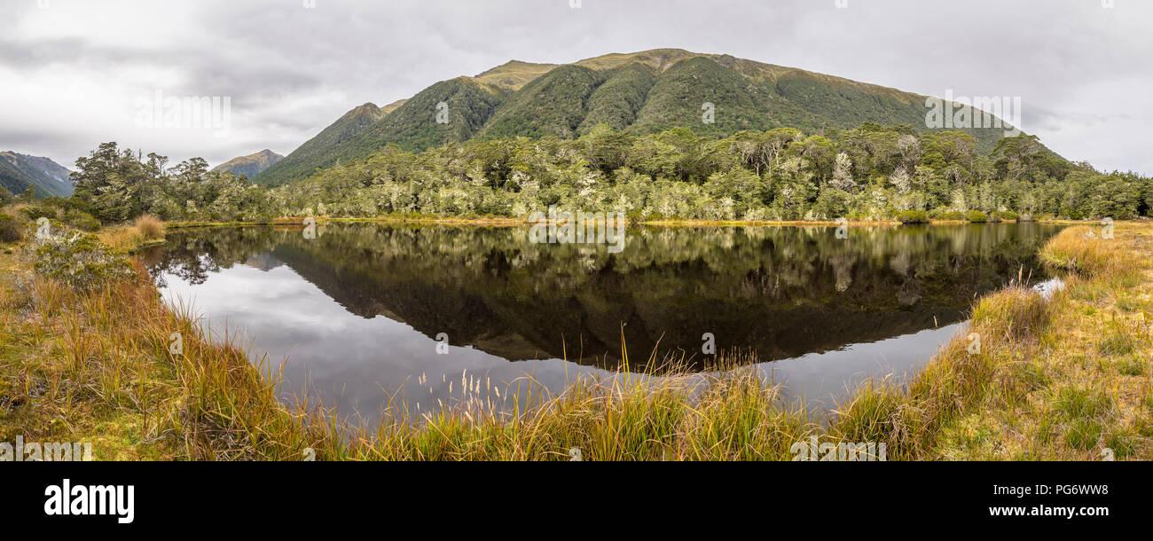 Nuova Zelanda, Isola del Sud, la Westcoast regione, al Lewis Pass Immagini Stock