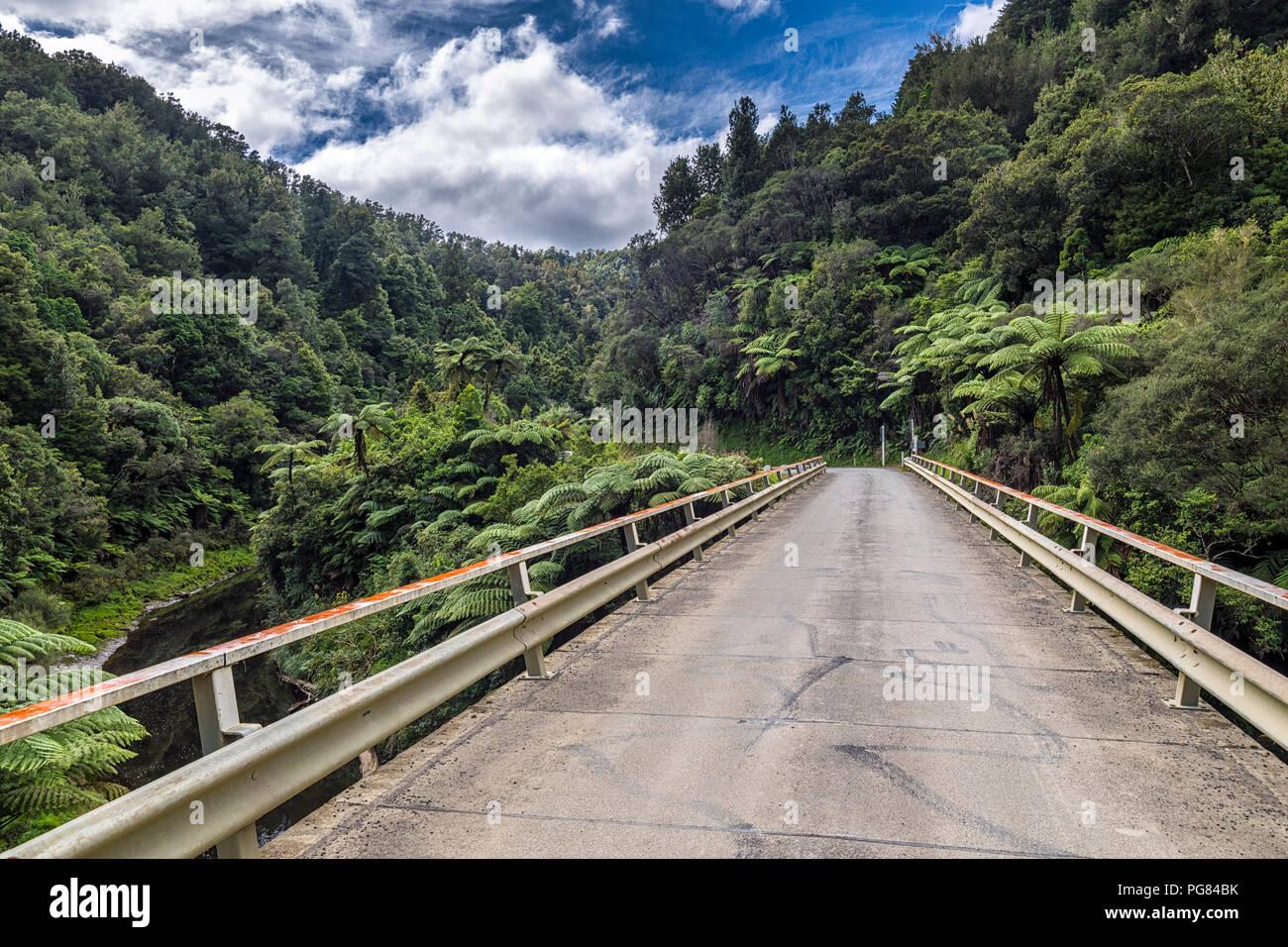 Nuova Zelanda, Isola del nord, Taranaki, mondo dimenticato autostrada Immagini Stock