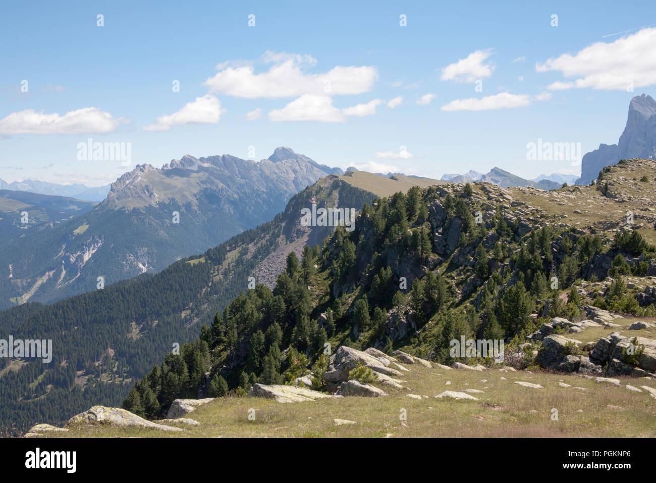 Pendici boscose del Rasciesa giacente sopra e tra la Val di Funes e la Val Gardena Estate Dolomiti Italia Immagini Stock