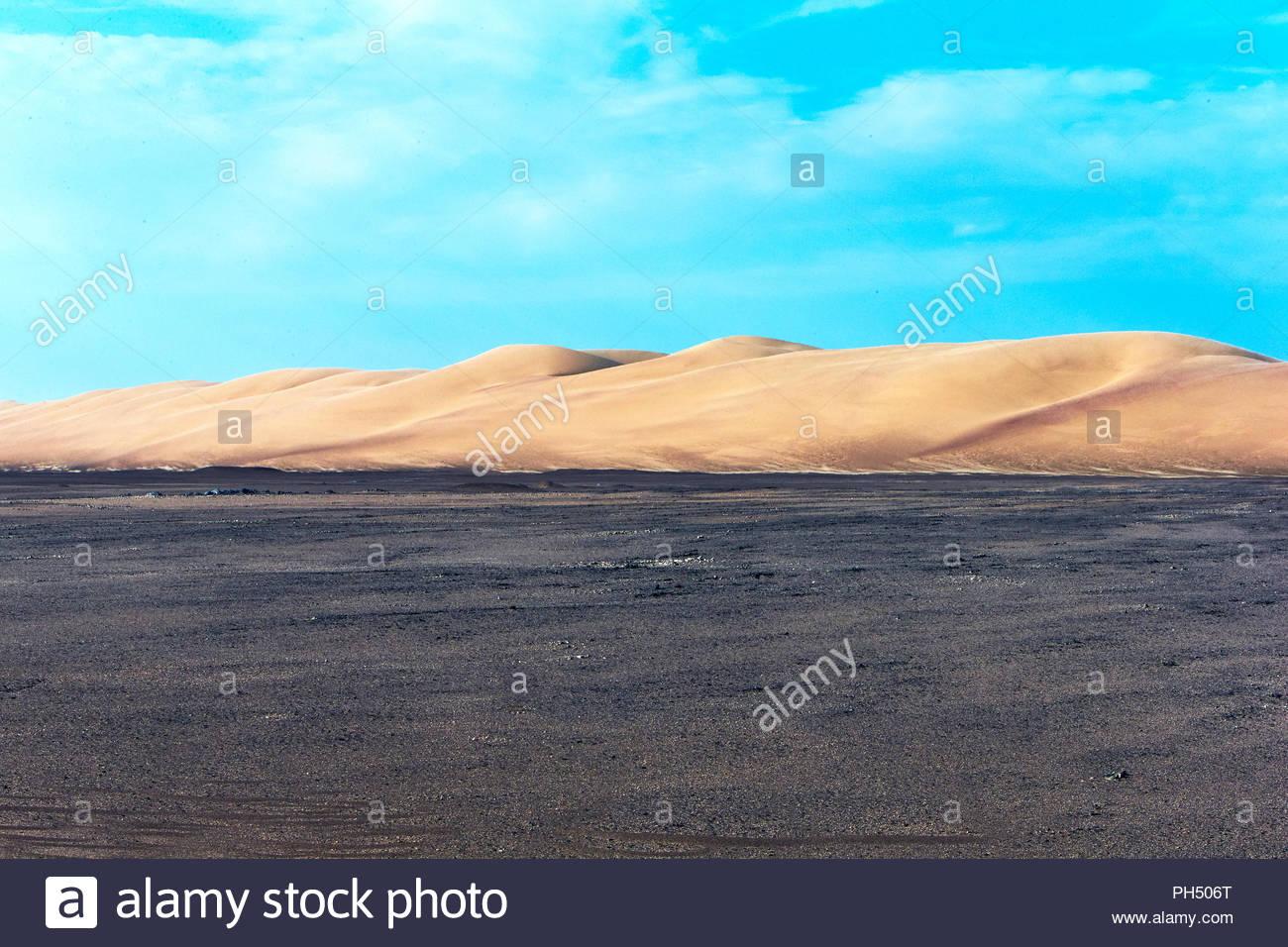 Il paesaggio del deserto Immagini Stock