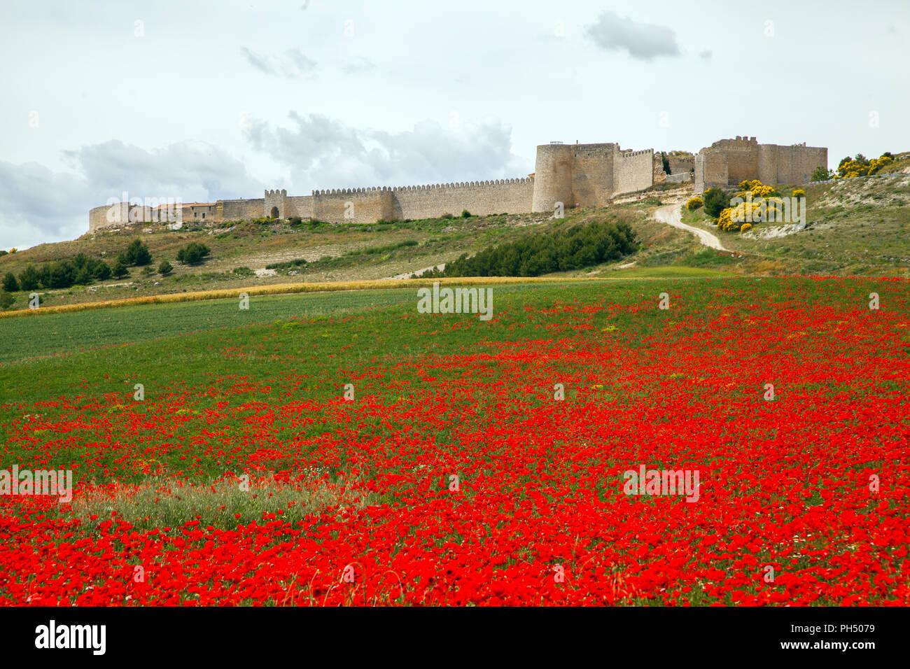 Lo spagnolo medievale cinto da mura di Uruena nella regione di Valladolid Castiglia y Leon in Spagna è conosciuta come Villa del Libro la città di libri Immagini Stock