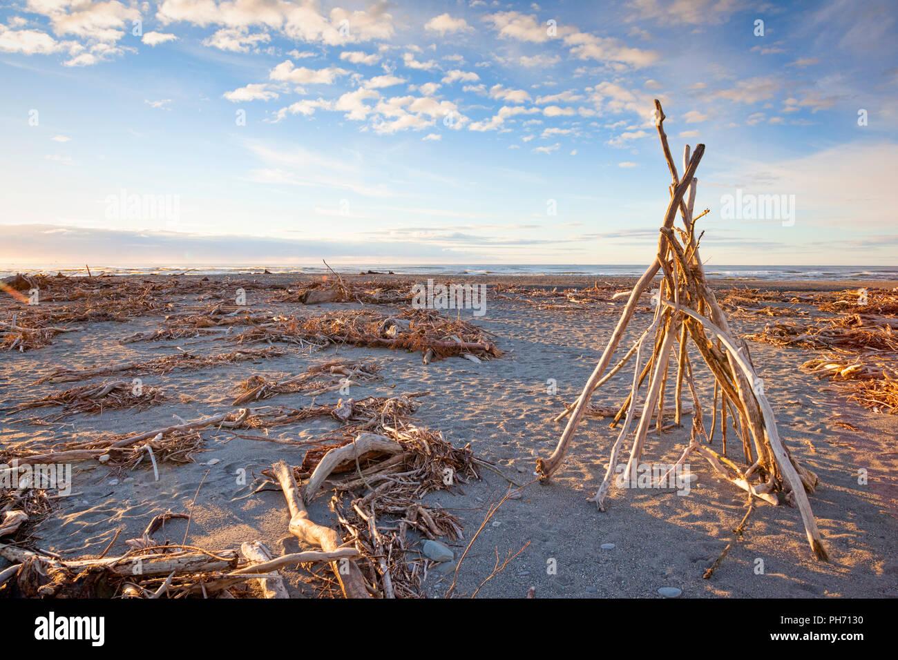 Driftwood sulla spiaggia di Hokitika, nella costa occidentale della Nuova Zelanda. Immagini Stock