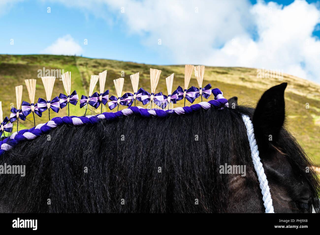 Ennerdale, Whitehaven, Cumbria, Regno Unito. Il 29 agosto 2018. La comunità di Ennerdale acqua nel distretto del lago tenere la loro annuale spettacolo agricolo. Incorporare Immagini Stock