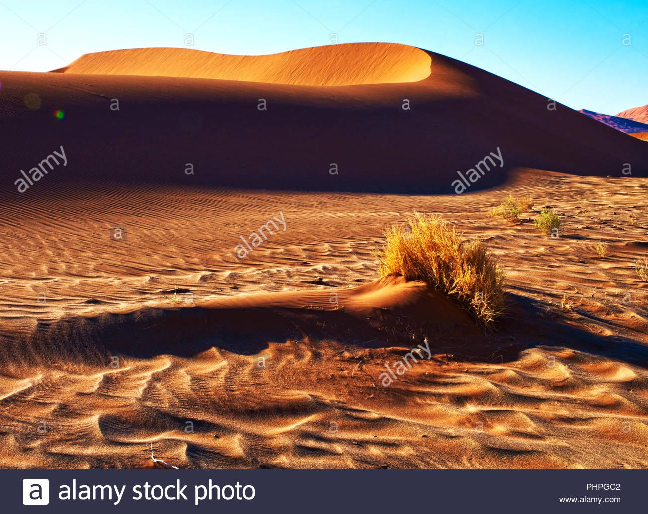 Il paesaggio del deserto in Namibia Immagini Stock