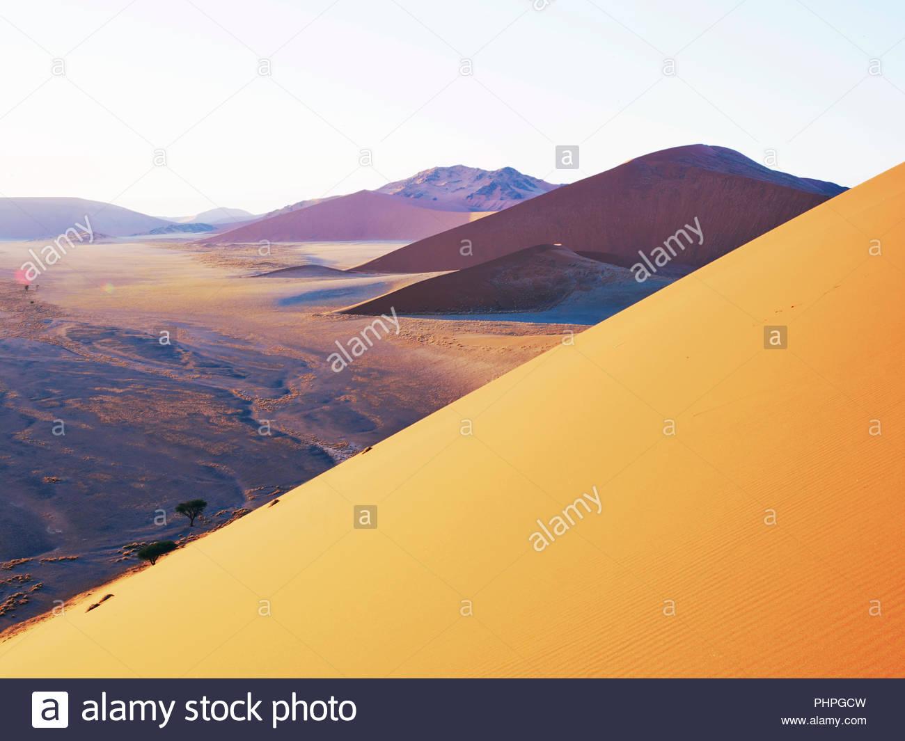 Dune del deserto in Namibia Immagini Stock