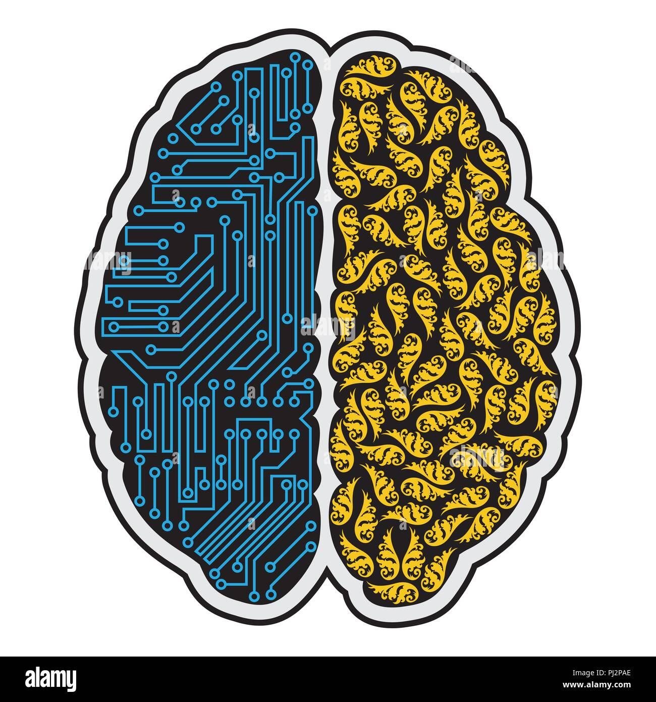 new products 6d42d d825b Parte destra e sinistra del cervello umano Illustrazione ...