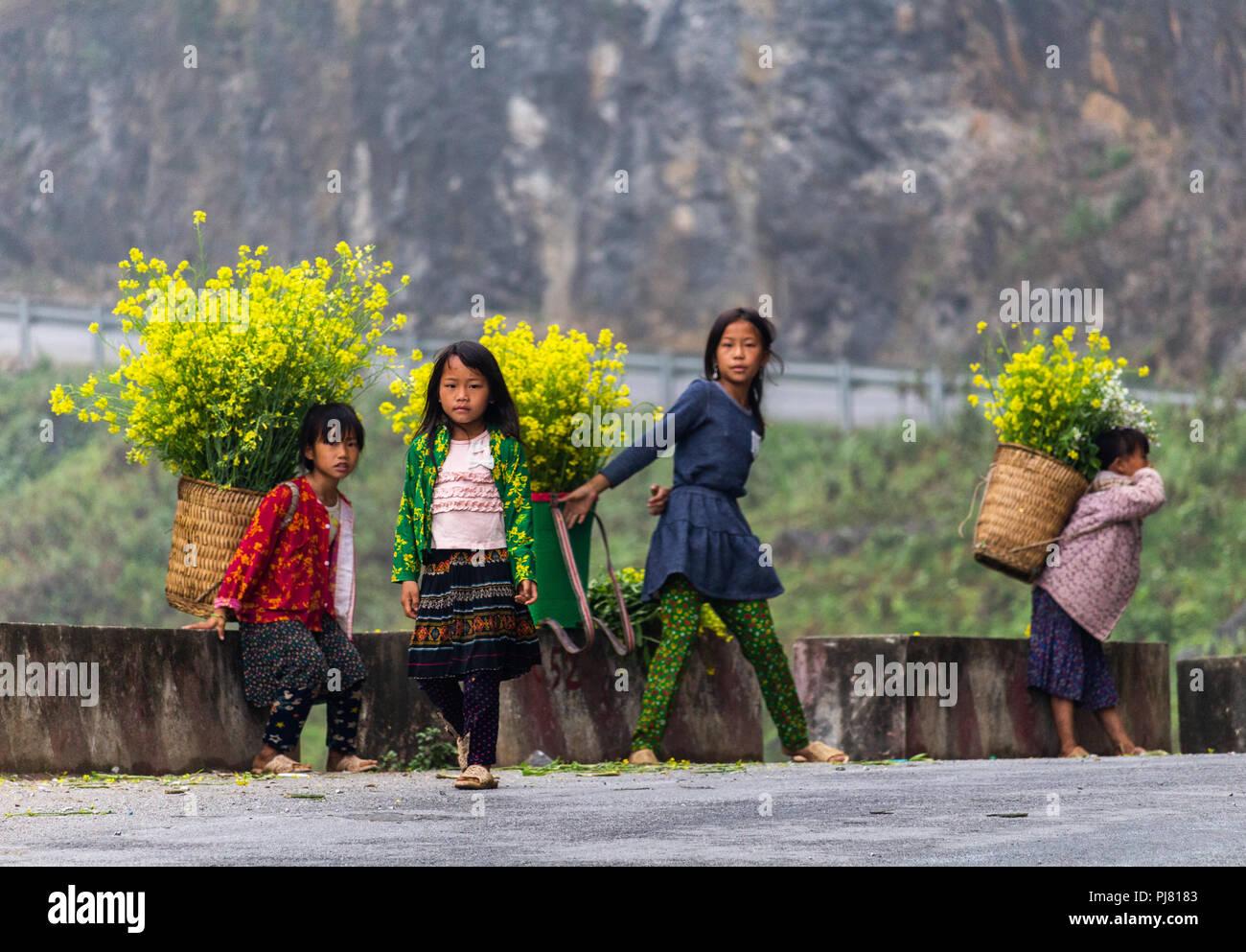 Ha Giang, Vietnam - Marzo 18, 2018: Bambini da Hmong minoranza etnica che vendono fiori nelle montagne del nord del Vietnam. Il lavoro minorile è fru Immagini Stock