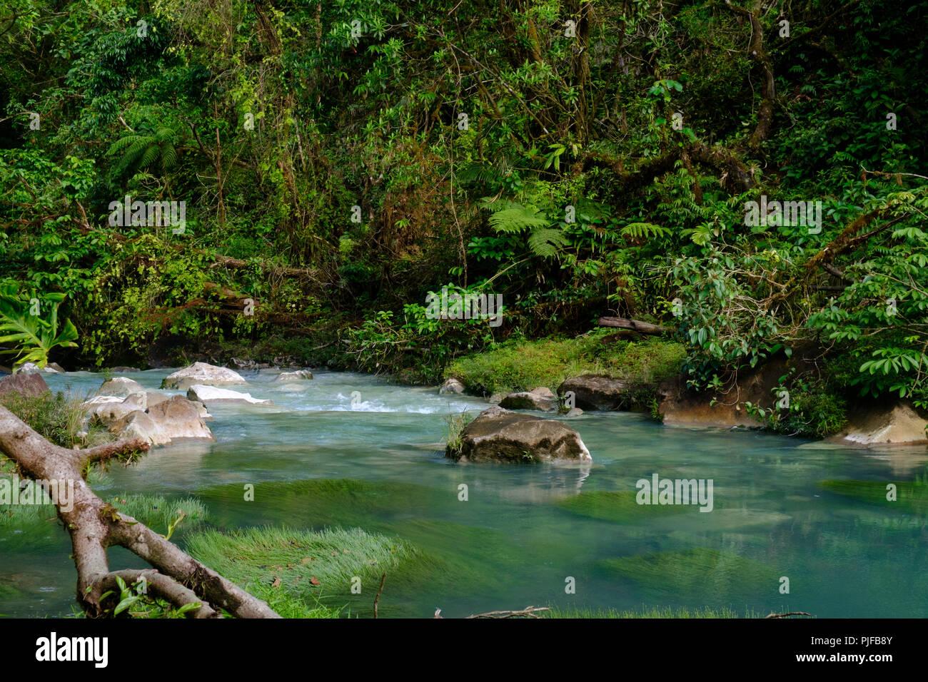 Rio celest, Costa Rica. Immagini Stock