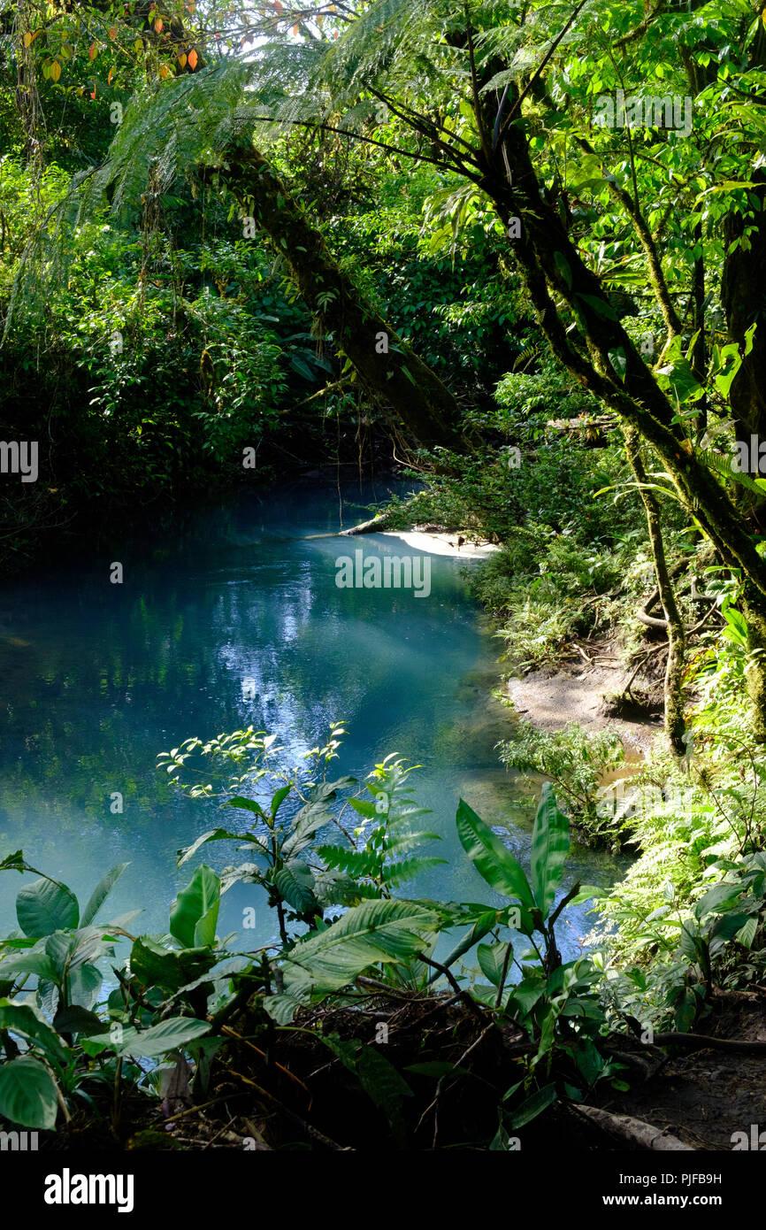 Rio celeste, Costa Rica Immagini Stock