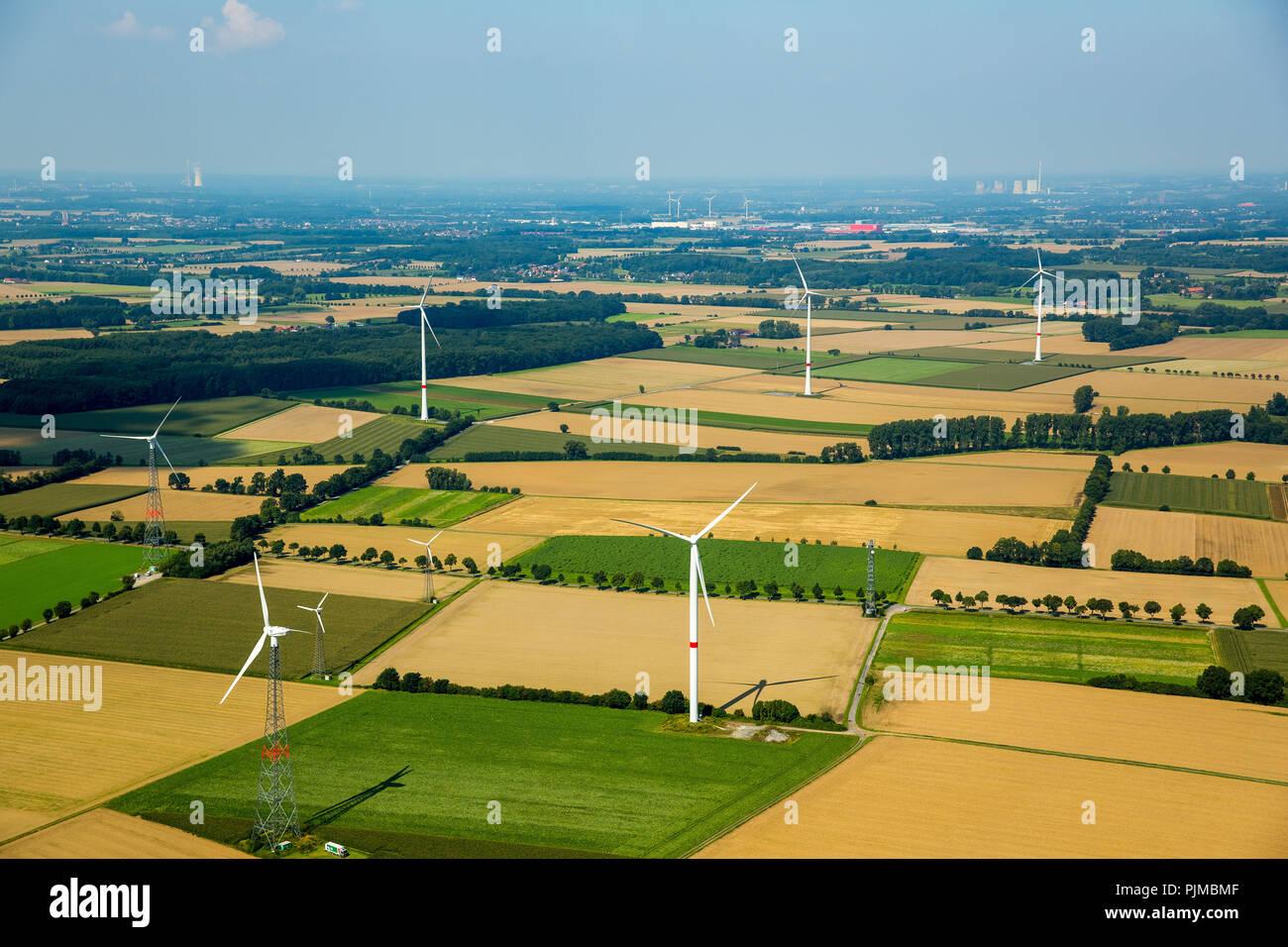 I campi, agricoltura, energia alternativa, energia eolica, le turbine eoliche ad ovest di Hilbeck, Werl, Soester Börde, Nord Reno-Westfalia, Germania Immagini Stock