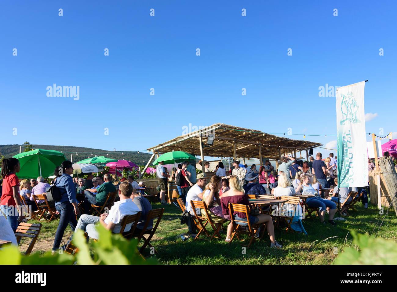 """Pfaffstätten: vigneto, bar al festival """"Genussmeile' lungo 1a Vienna linea acqua percorso escursionistico, aziende vinicole con proprio bar, visitatori Wiener Foto Stock"""