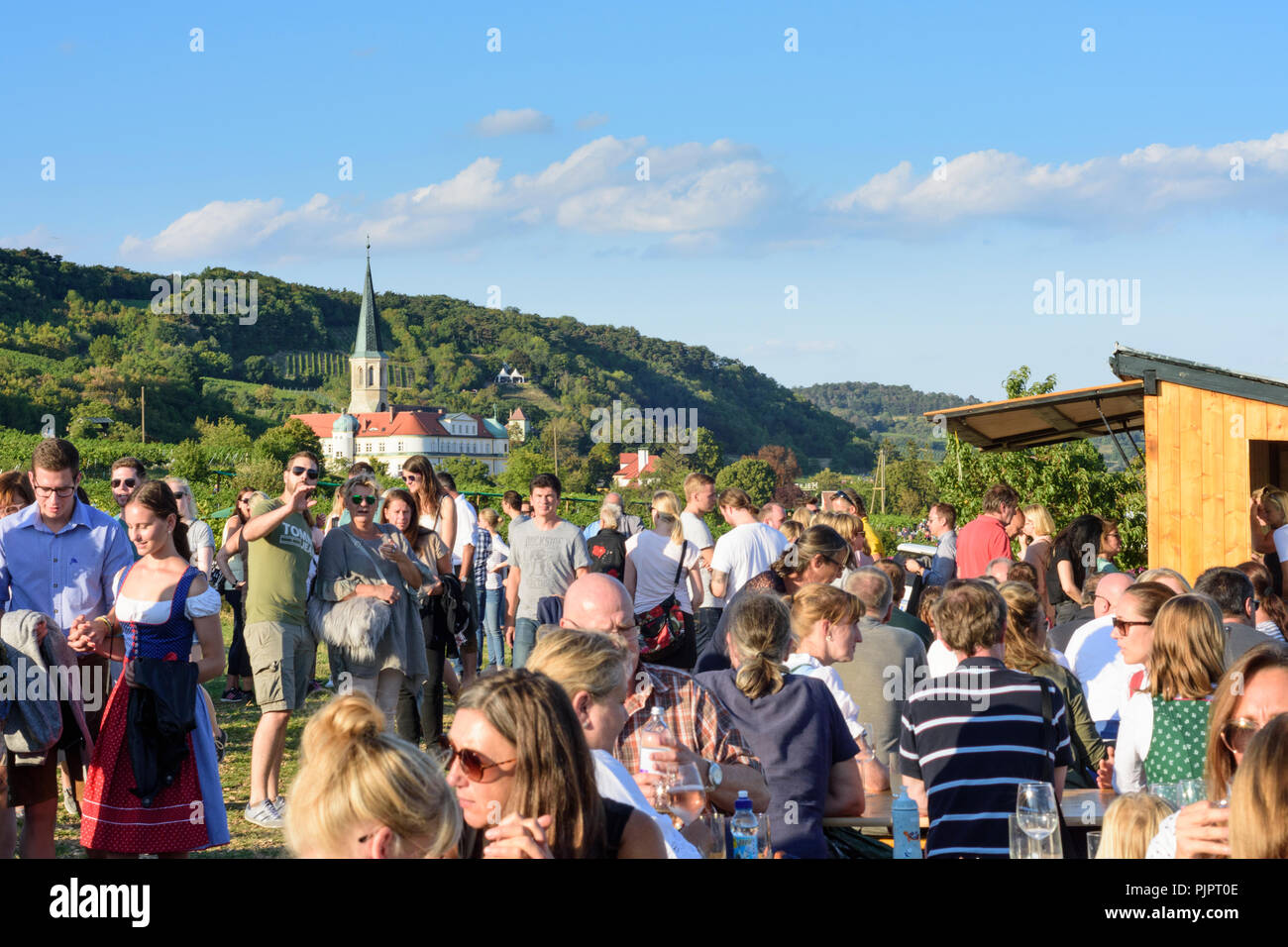 """Gumpoldskirchen: Deutschordensschloss (tedesco Fine Castello), vigneto, bar al festival """"Genussmeile' lungo 1a Vienna linea acqua percorso escursionistico, winegro Foto Stock"""