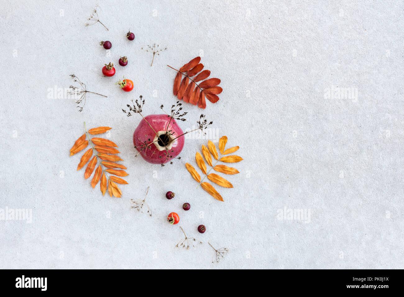Come Seccare Le Piante arredamento d'autunno. vaso in ceramica, bacche, seccare