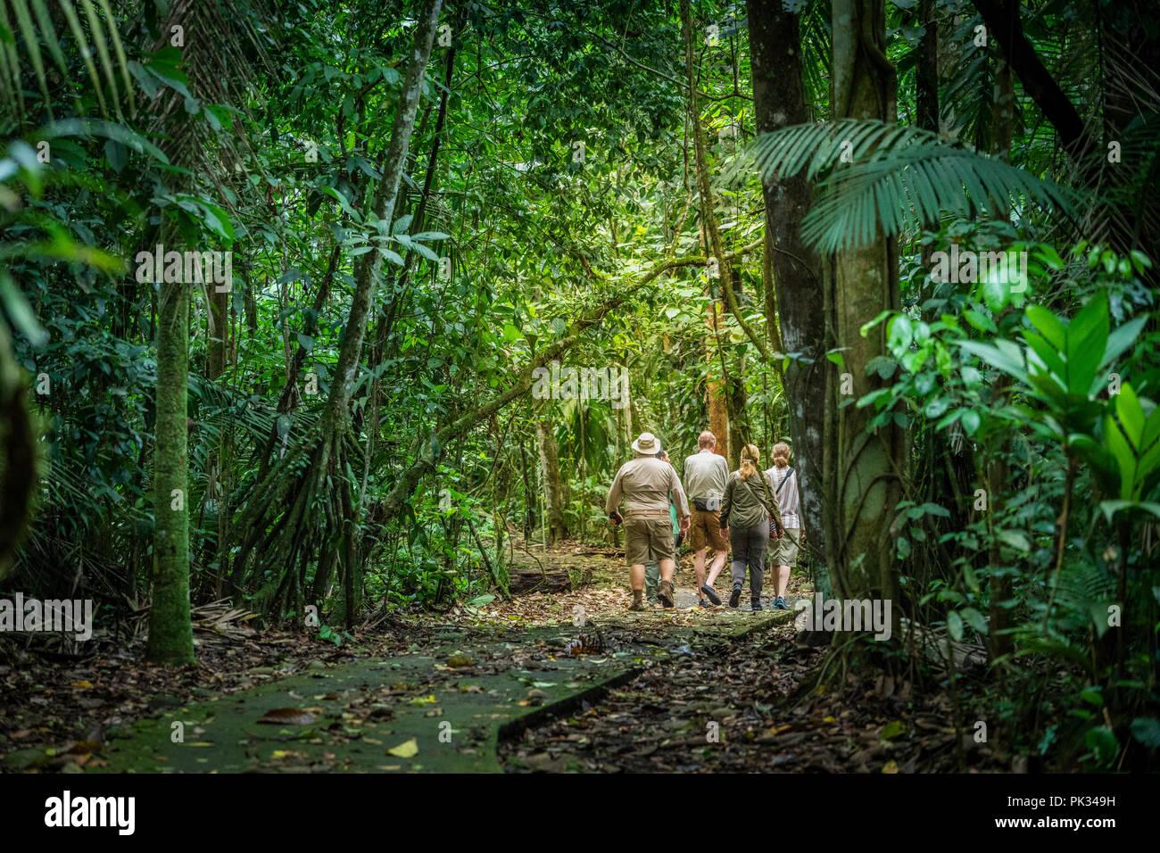 I turisti, Tenorio Il Parco Nazionale del Vulcano, Costa Rica Immagini Stock
