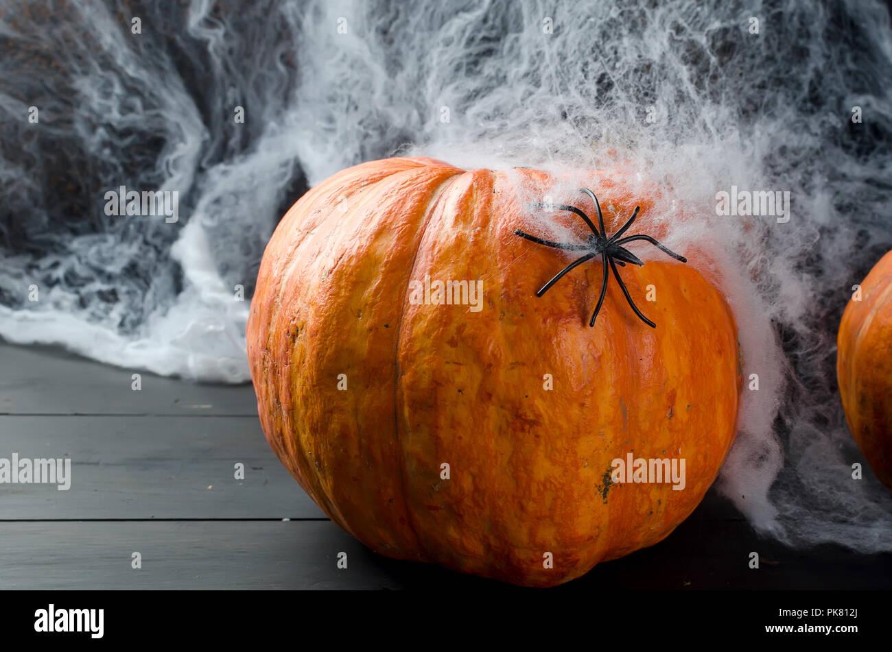 Festa di Halloween Ragno ratto pipistrello OMBRA Sagome Fancy Dress Decorazione