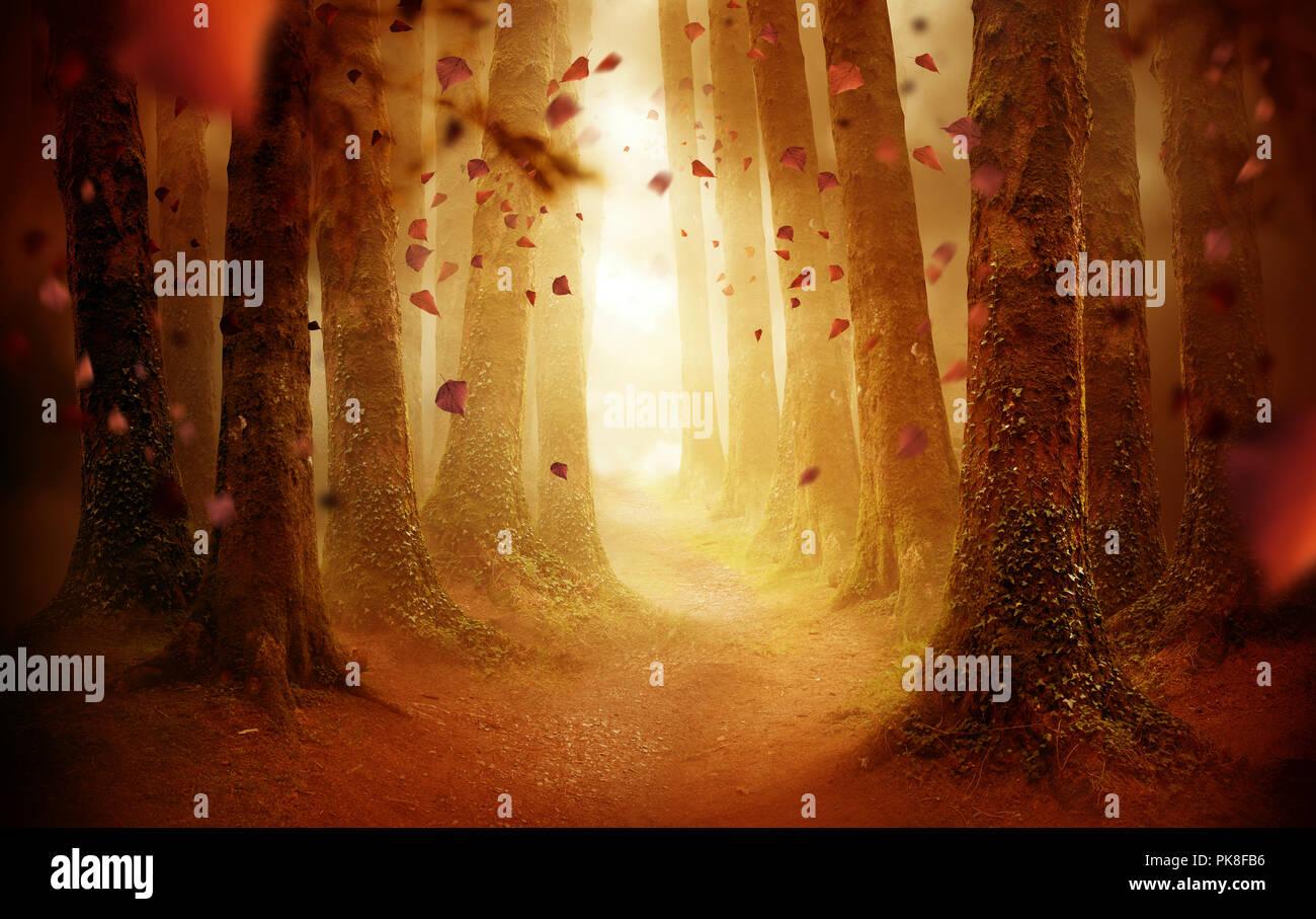 Un viale alberato sentiero che conduce in un autunno foresta colorati con foglie che cadono come il sole splende attraverso. Foto composite. Foto Stock