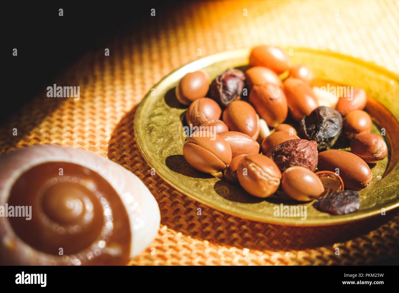 I dadi di Argan semi sulla piastra - Argan è un antiossidante utilizzato per produrre olio per la pelle Immagini Stock