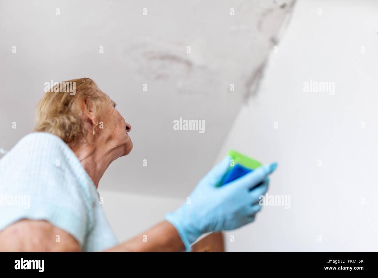 Parete Dacqua In Casa : Damp ceiling and wall immagini damp ceiling and wall fotos stock