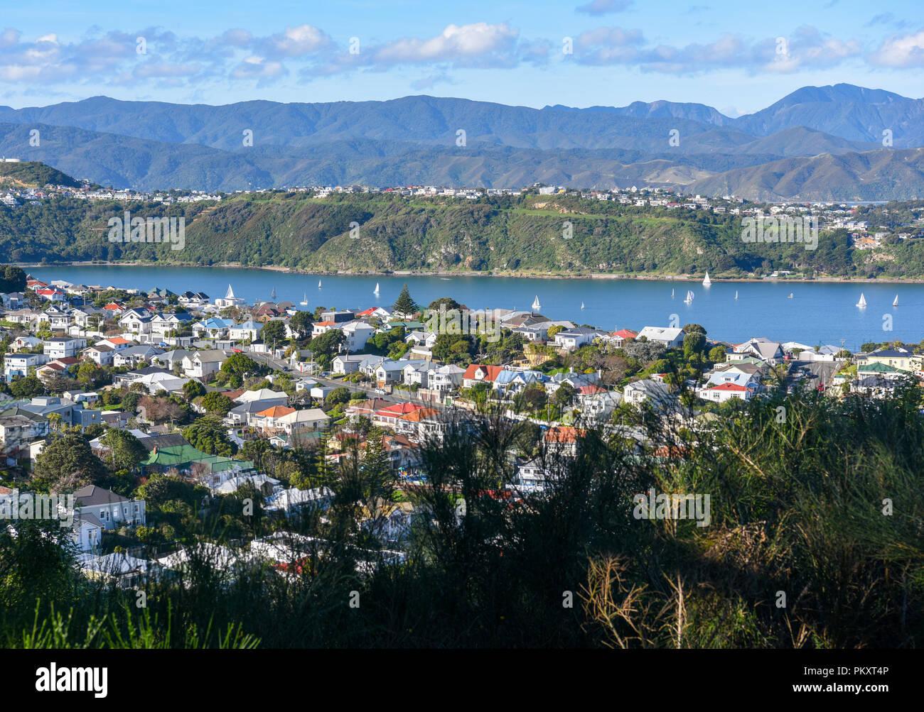 """Wellington. 14 Luglio, 2018. Foto scattata a luglio 14, 2018 mostra lo scenario di Wellington, in Nuova Zelanda. Wellington è stata nominata la Nuova Zelanda la migliore destinazione nelle ultime Lonely Planet guida, con la città con marchio """"una delle più incredibili capitali del piccolo nel mondo"""". Credito: Guo Lei/Xinhua/Alamy Live News Immagini Stock"""