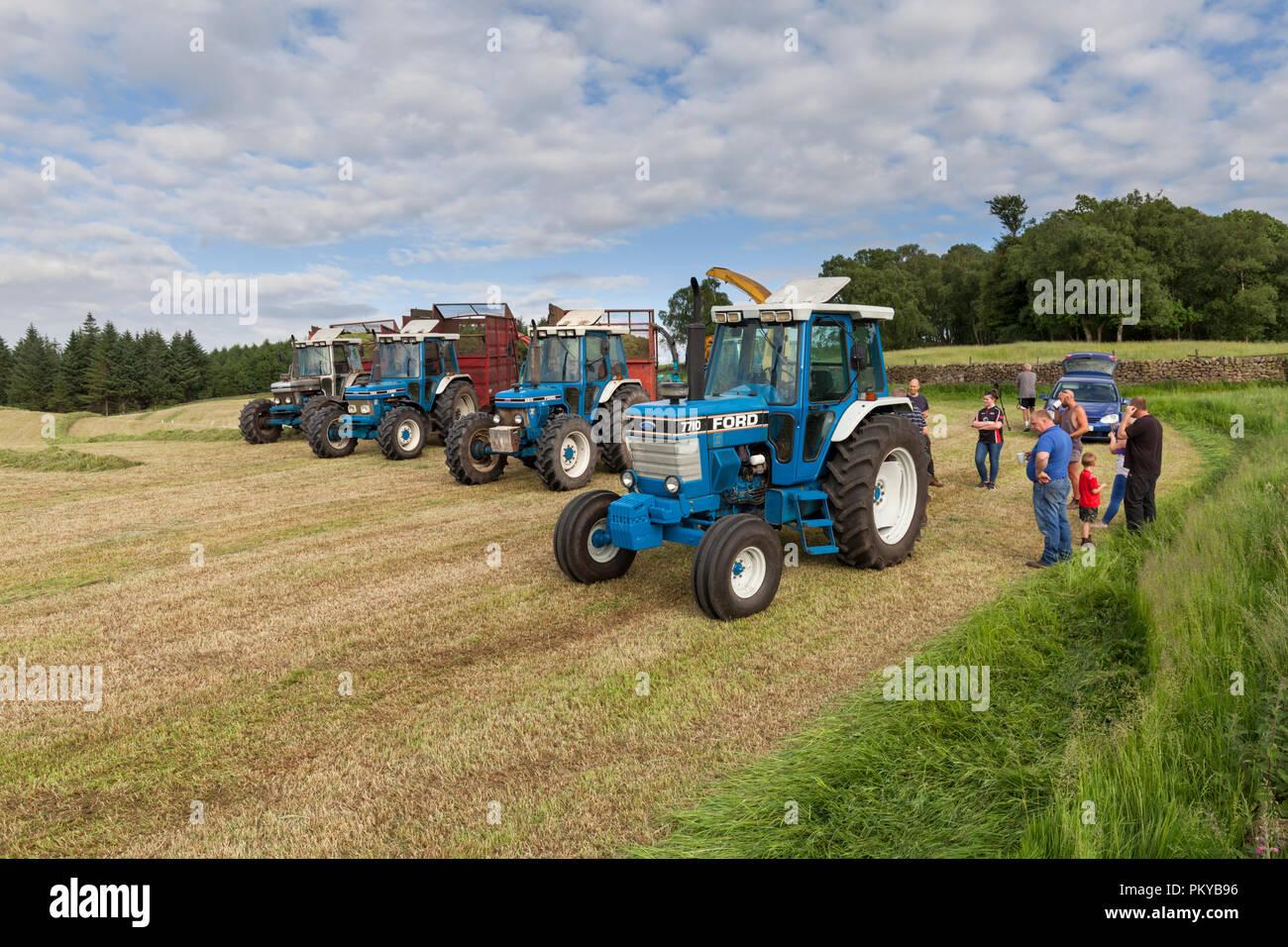 Line-up di vintage 10 serie trattori Ford essendo utilizzato per raccogliere insilato su di una fattoria di caseificio in Inghilterra da sinistra a destra 7810 Silver Jubilee, 7810, 6810, 7710 Immagini Stock