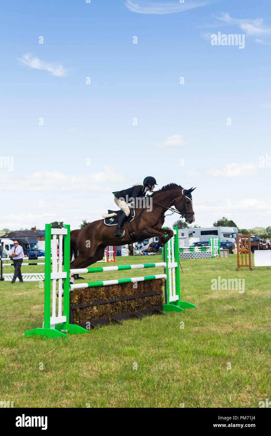 Cavallo e cavaliere in un show jumping concorrenza presso il Arthington show, West Yorkshire nel 2017. Immagini Stock