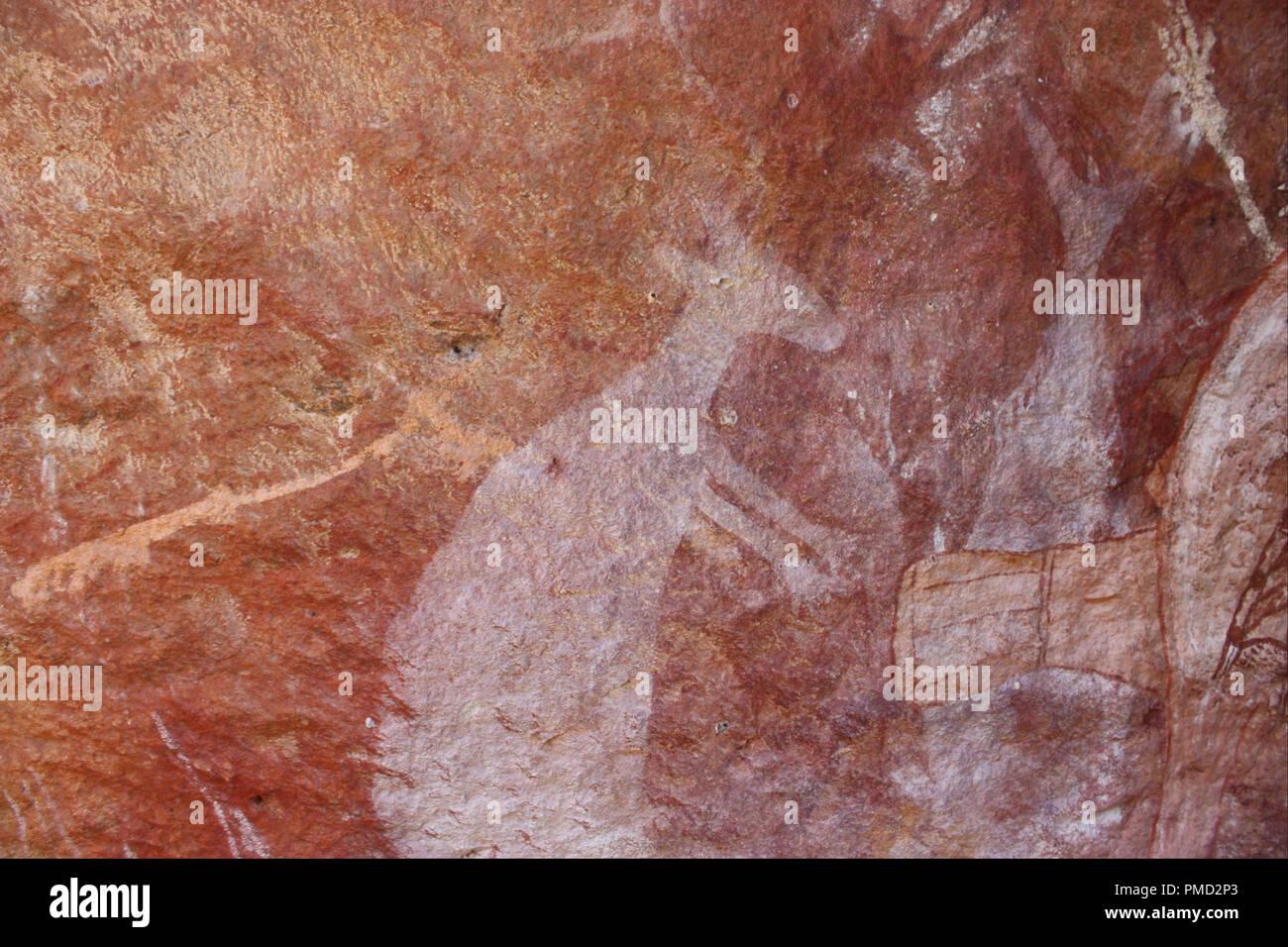 Canguro bianco. Data/Periodo: 1800 - 1899. La pittura. Autore: Sconosciuto. Immagini Stock
