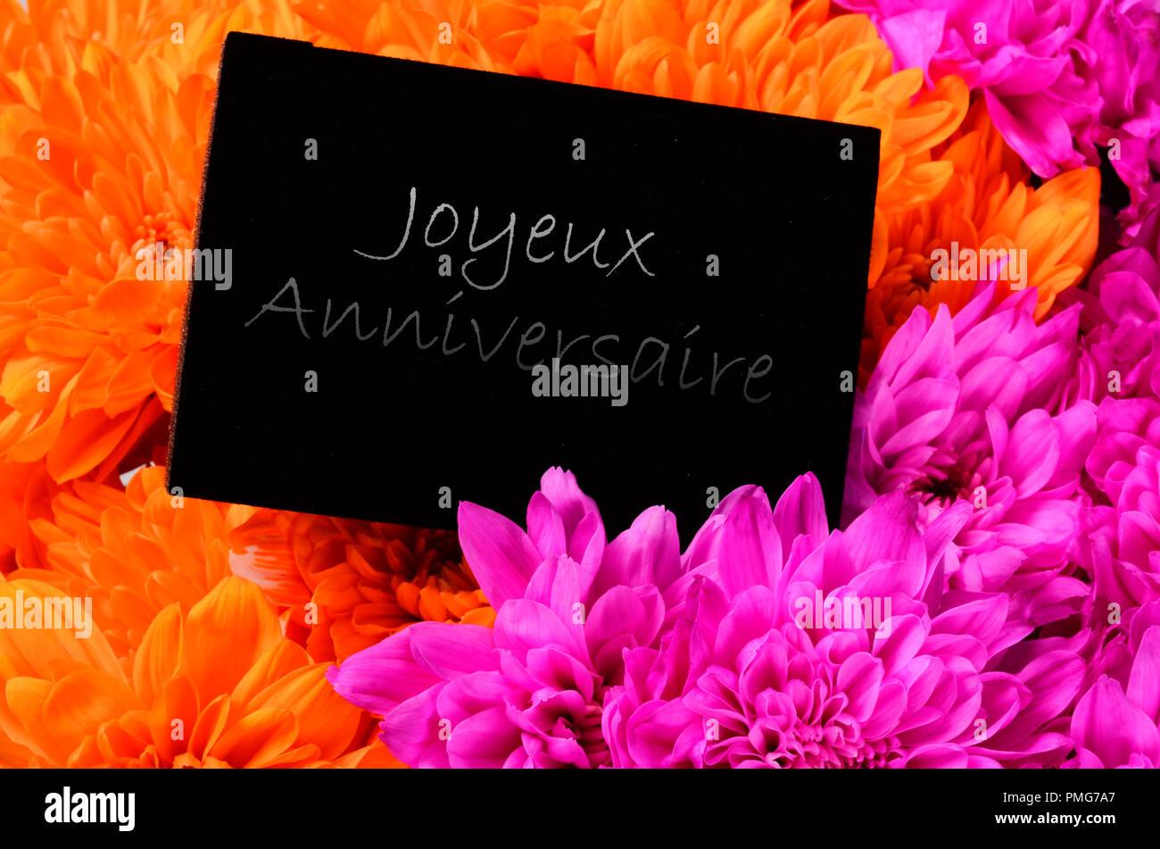 Arancione E Rosa Fiore Aster E Carta Nera Per Buon