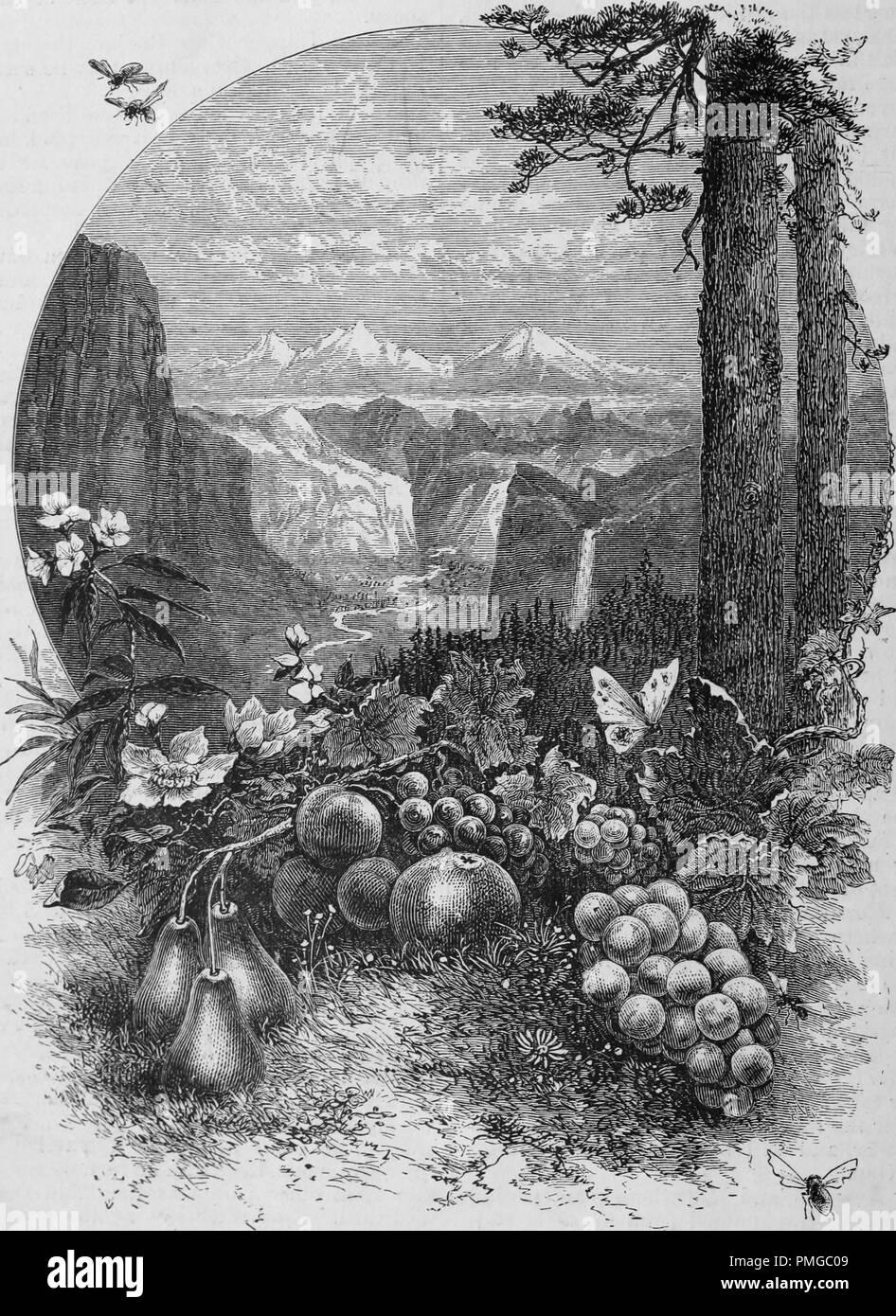 """Incisione di """"una visione del paese d'Oro"""" di Thomas Moran, dal libro """"Pacifico turisti"""", 1877. La cortesia Internet Archive. () Immagini Stock"""
