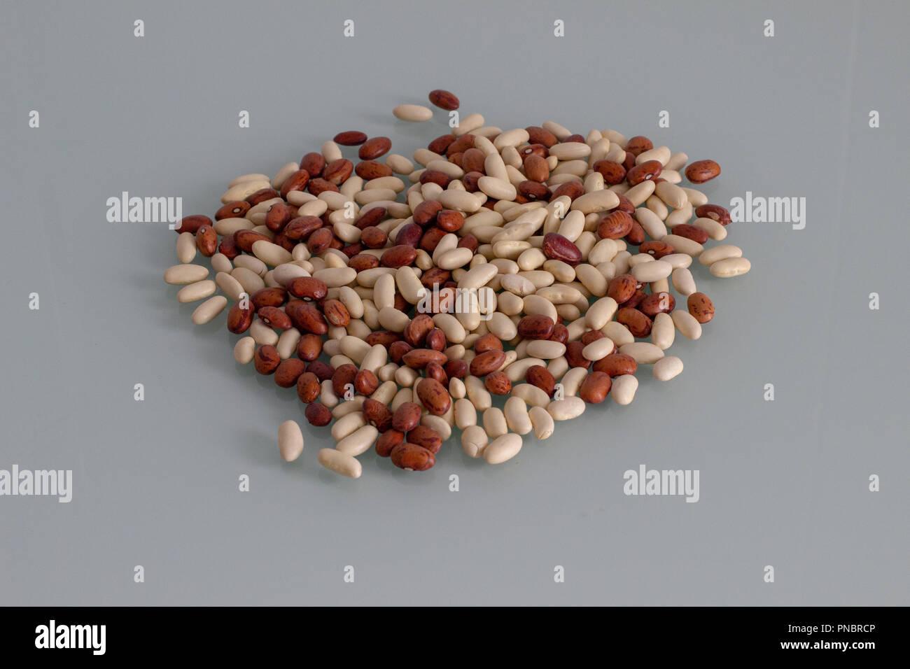 Mix di fagioli Immagini Stock