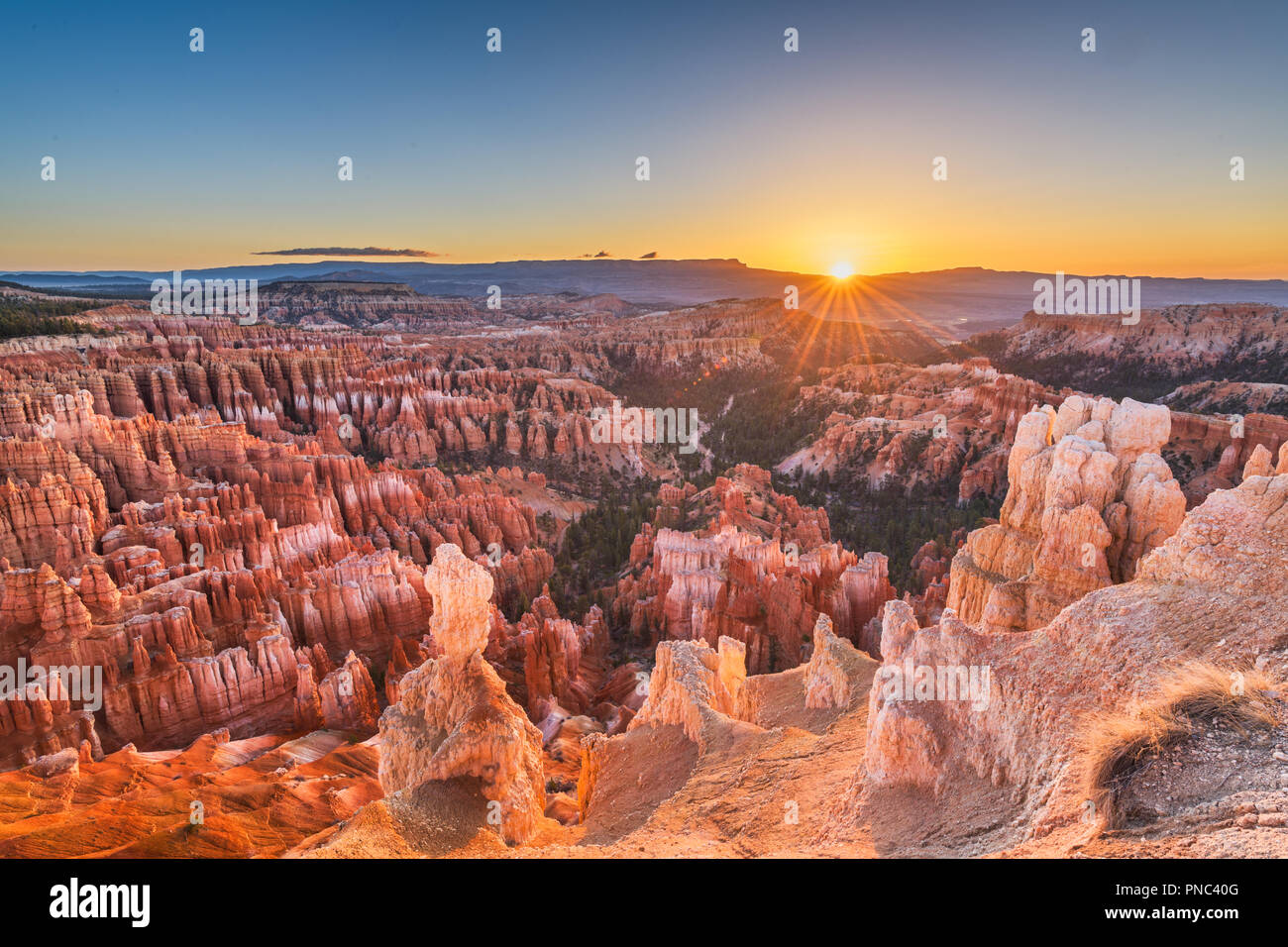Parco Nazionale di Bryce Canyon, Utah, Stati Uniti d'America all'alba. Immagini Stock