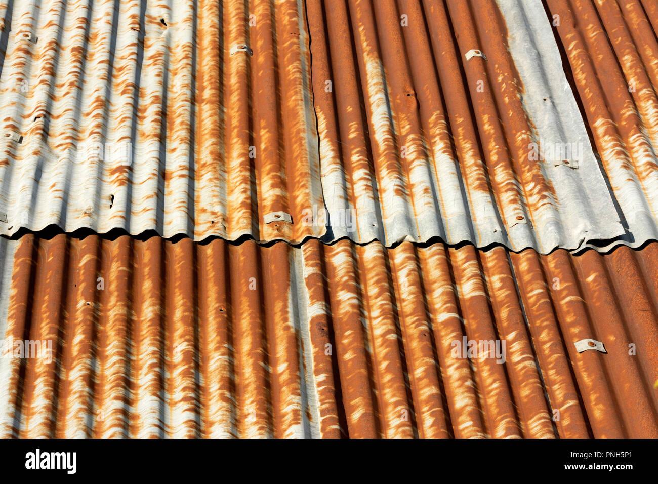 Foglio ondulato su un tetto, Auvergne, Francia Immagini Stock