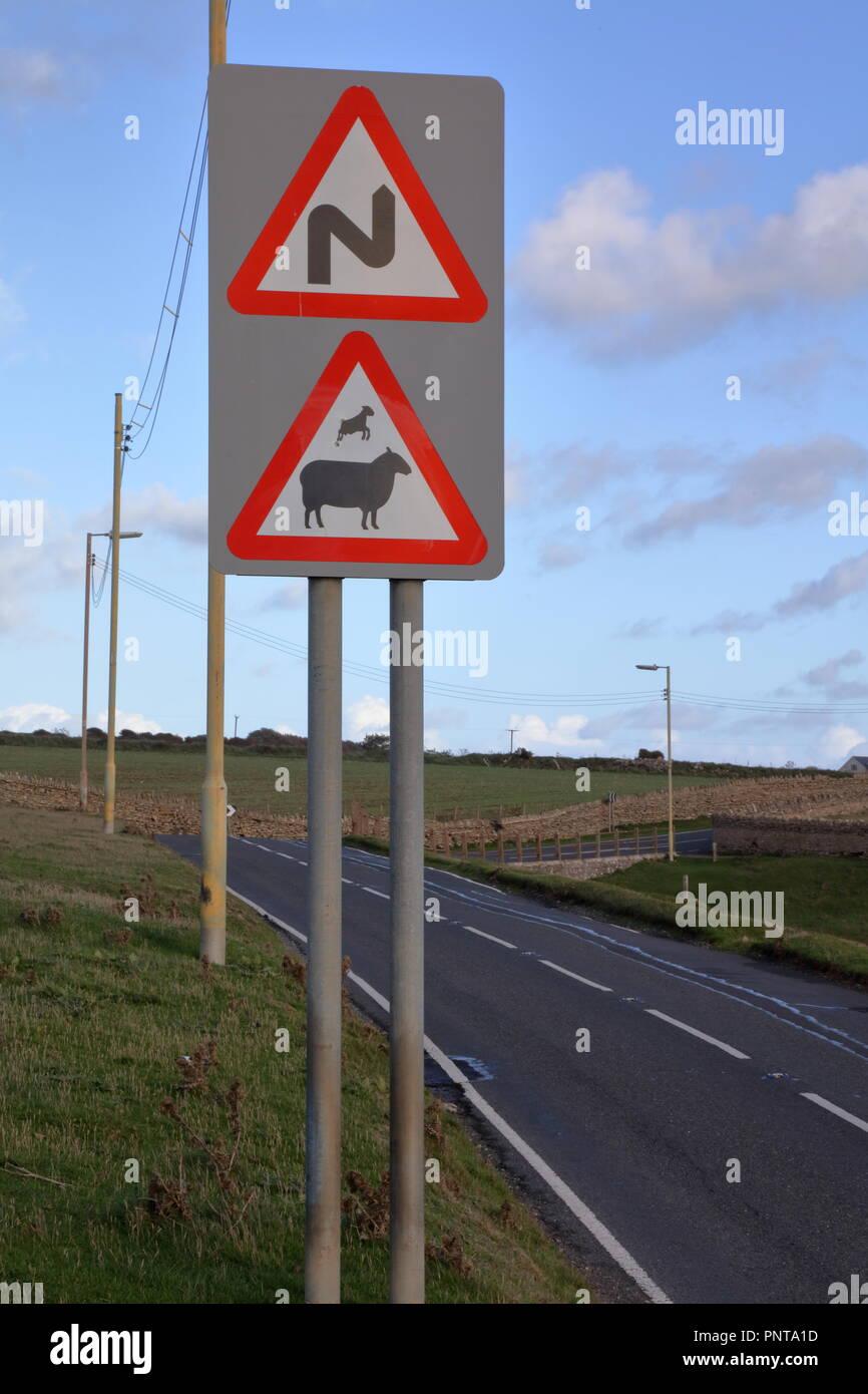 Un avvertimento roadise segno indicante un agnello saltando su sua madre aggiunto da un graffittiest con un senso dell'umorismo. Immagini Stock