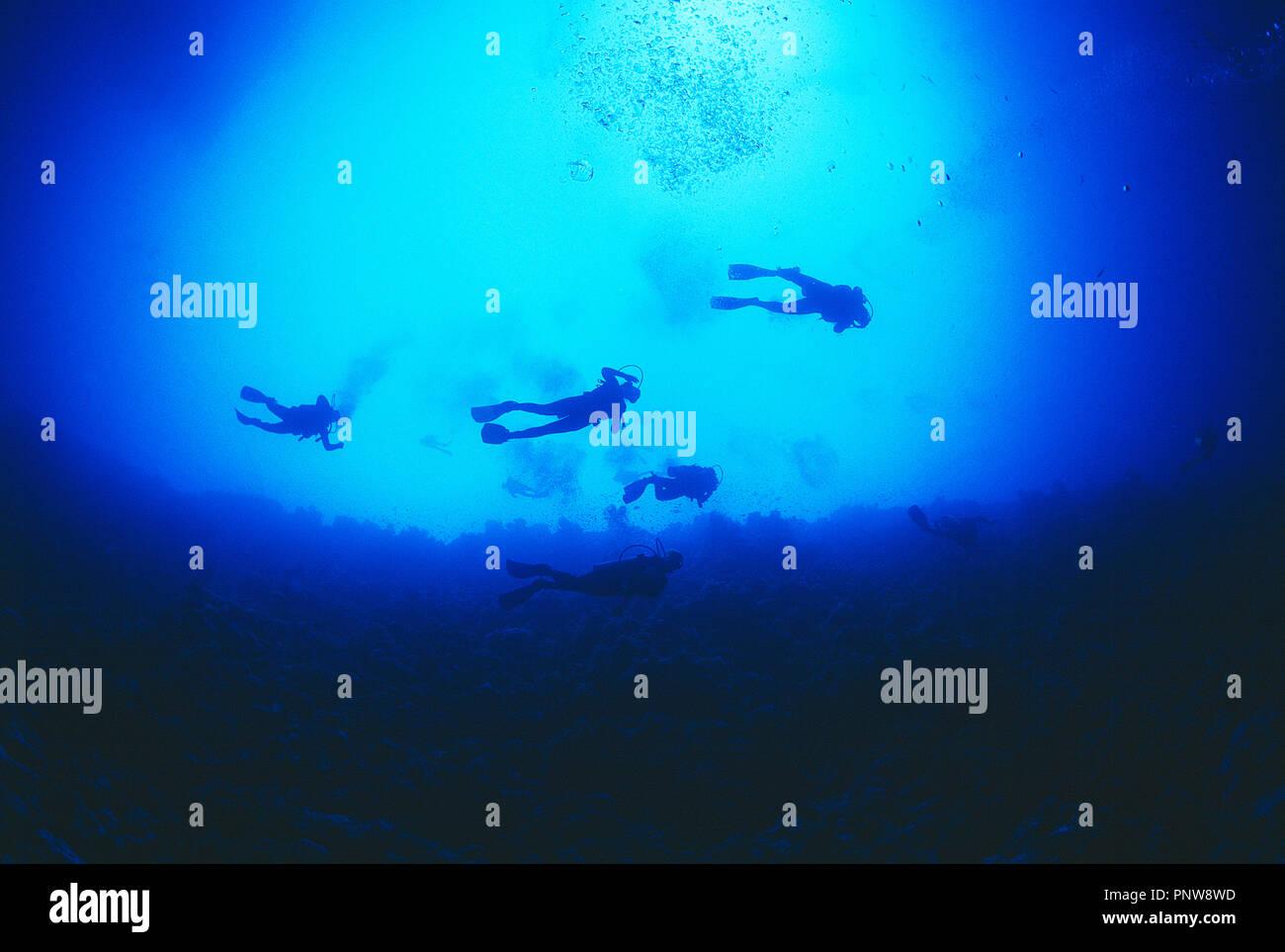 L'Egitto. Mar Rosso. Un gruppo di dieci subacquei sott'acqua. Visto da sotto. Immagini Stock