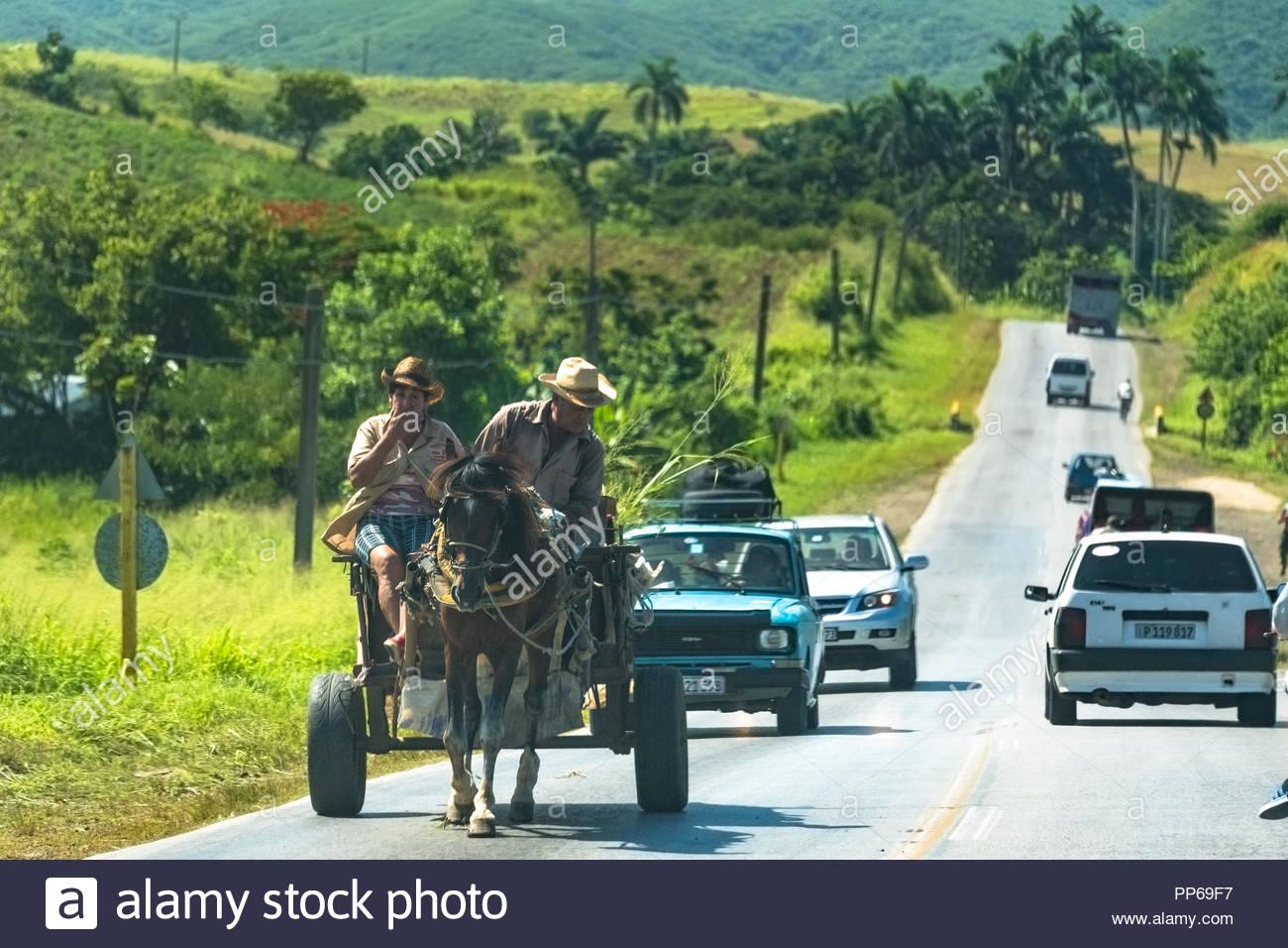 Il popolo cubano di trasporto quotidiano stile di vita: un cavallo disegnato il carrello rallenta il traffico nella strada centrale Immagini Stock