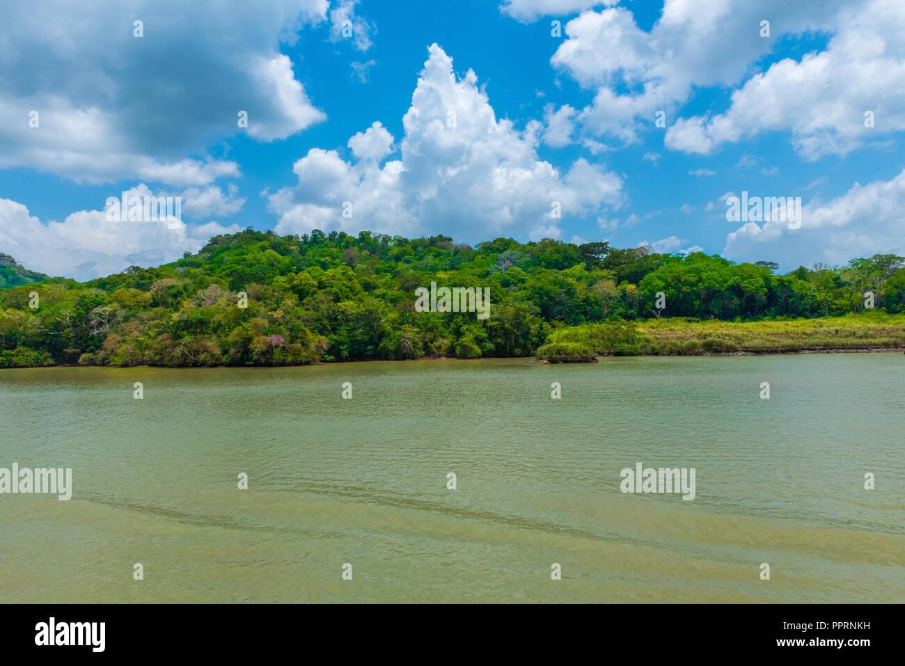 Piccolo albero riempito le isole che punteggiano il paesaggio del Lago di Gatun nel Canale di Panama complesso. Immagini Stock