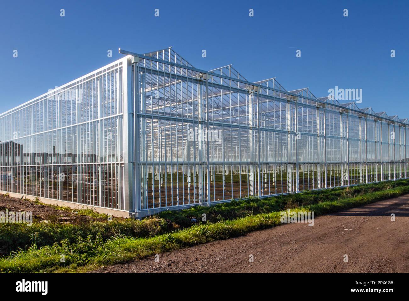 Tarleton metallo di grandi strutture agricole con illuminazione