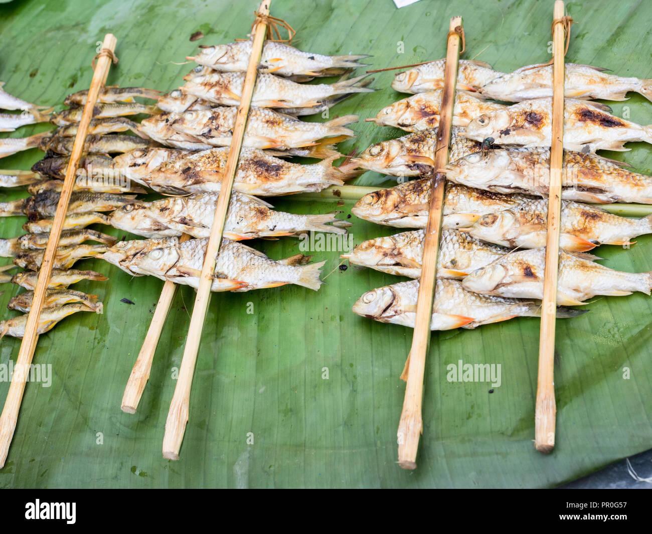 Grigliata di pesce di fiume da un mercato all'aperto Nong Khiaw, Laos, Indocina, Asia sud-orientale, Asia Immagini Stock