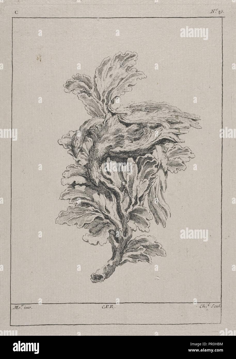 Piastra C19 dal Livre de légumes inventées et dessinées par J. Me.r, Chedel, Pierre Quentin, 1705-1763, Huquier, Gabriel Immagini Stock