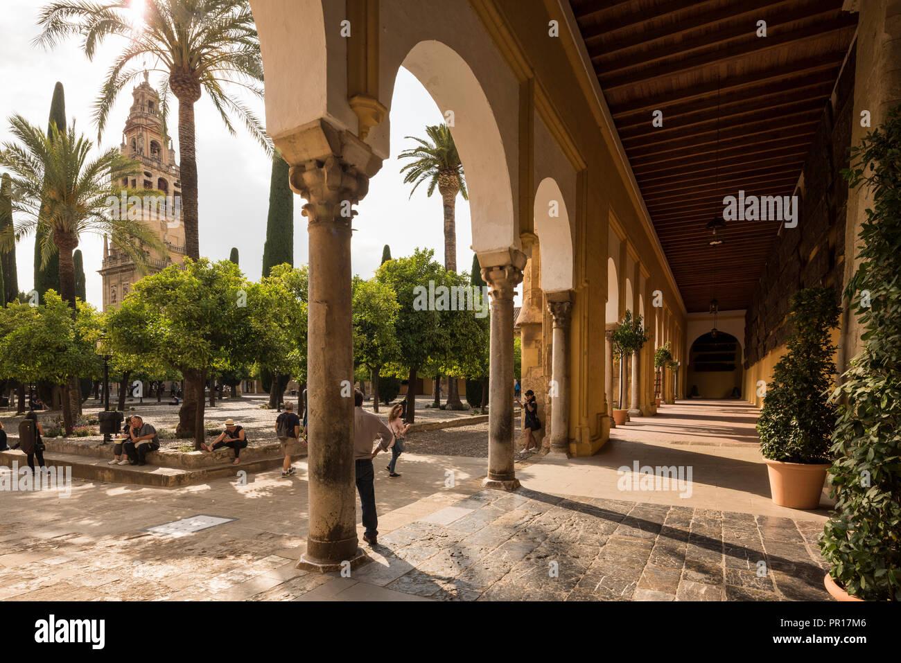 La grande moschea (Cattedrale di Nostra Signora dell'Assunzione) (Mezquita di Cordova, Sito Patrimonio Mondiale dell'UNESCO, Cordoba, Andalusia, Spagna, Europa Immagini Stock