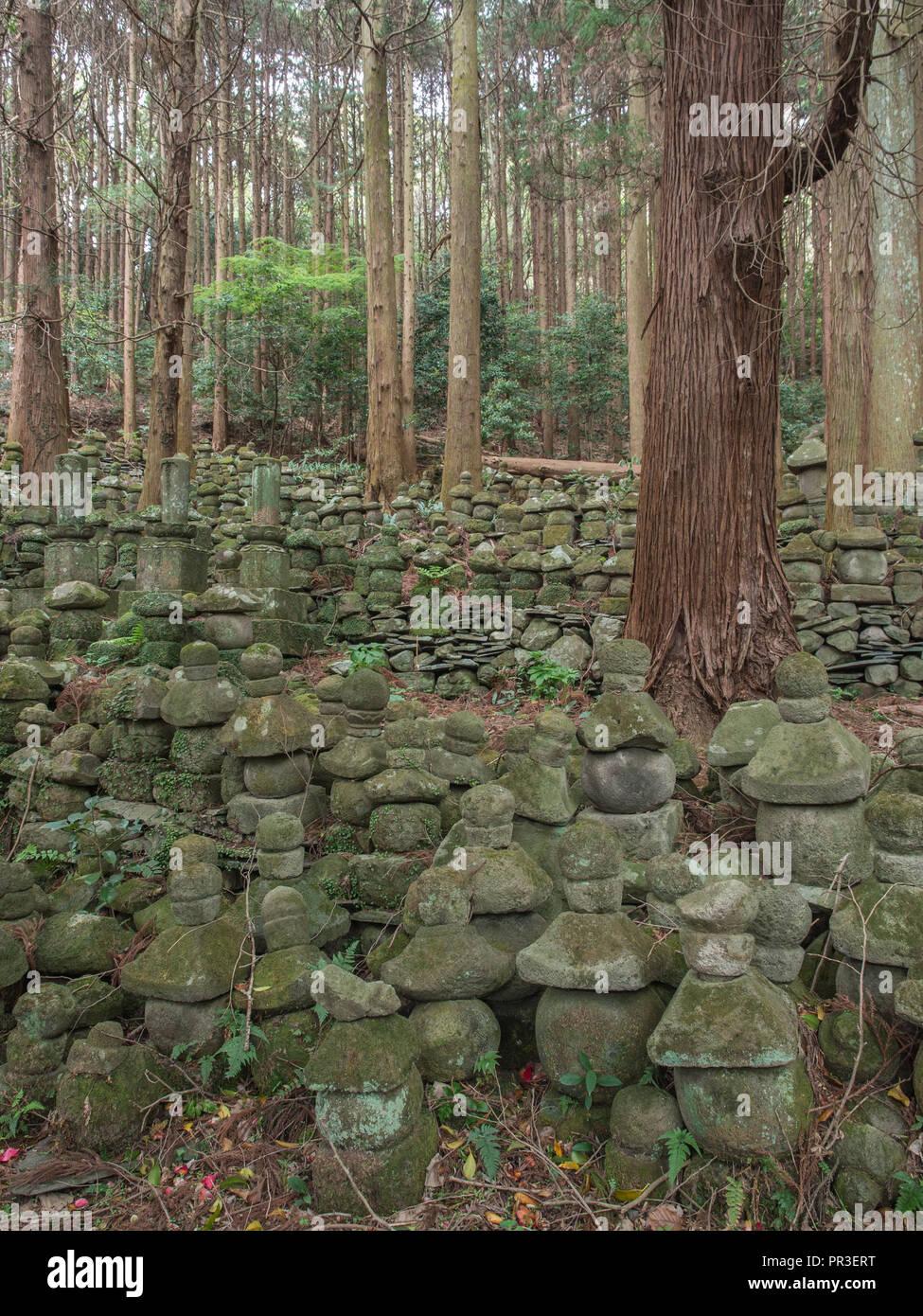 Cippi in foresta ha dato cantiere, rovine del tempio Sentoji, Kunisaki, Oita, Kyushu, Giappone Immagini Stock