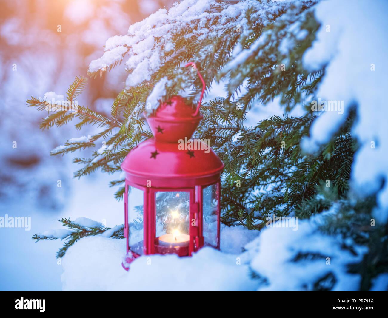 Foto Con La Neve Di Natale.Lanterna Di Natale Su Rami Di Abete Con La Neve Foto Stock Alamy