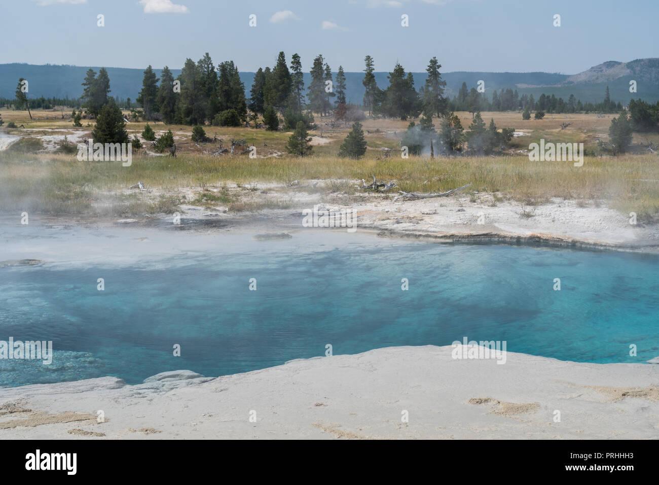 Off trail primavera calda nel Parco Nazionale di Yellowstone. Immagini Stock
